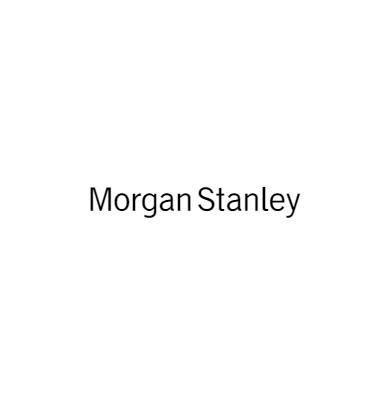 Photo of The Govedarica Group - Morgan Stanley