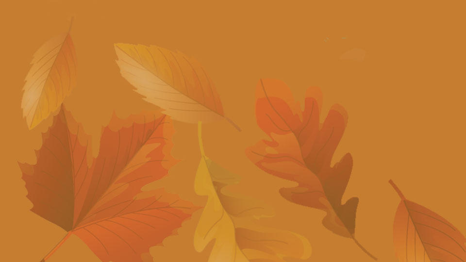 Fall leaves on an orange-brown background