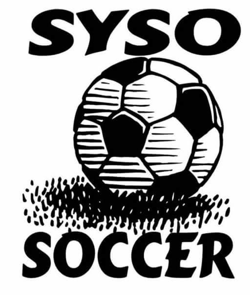 Vice President of SYSO youth recreational soccer league